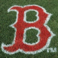 Authentic MLB Lawn Stencils