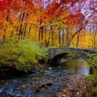 Fall's Rainbow