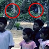 'Alien' and Floating Orb Captured On Film In The Amazon Rainforest