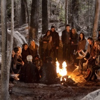 The Twilight Saga - Breaking Dawn - Part 2: New Character Images And Coven Breakdowns