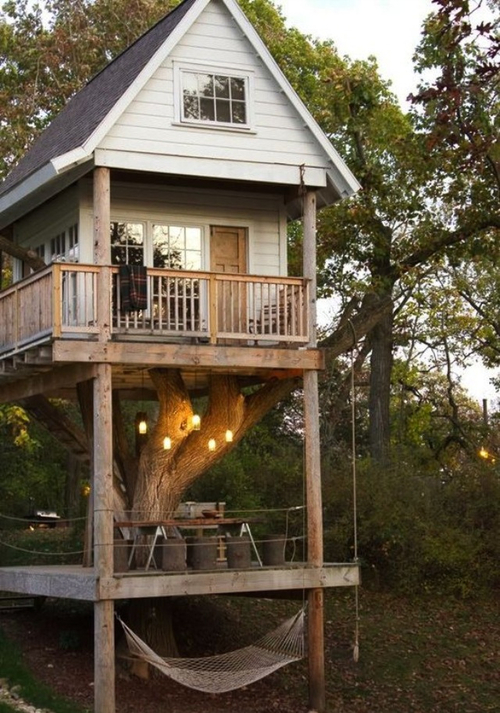 i want to live in a tree