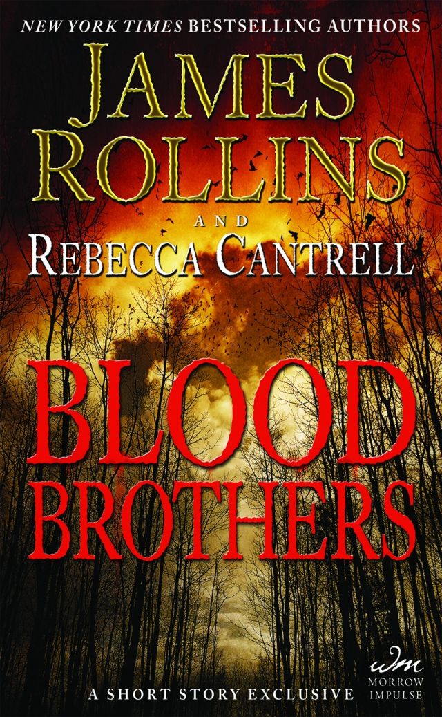 book_2013_blood_brothers_usa