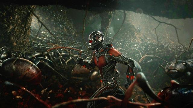 ant-man-ants-marvel