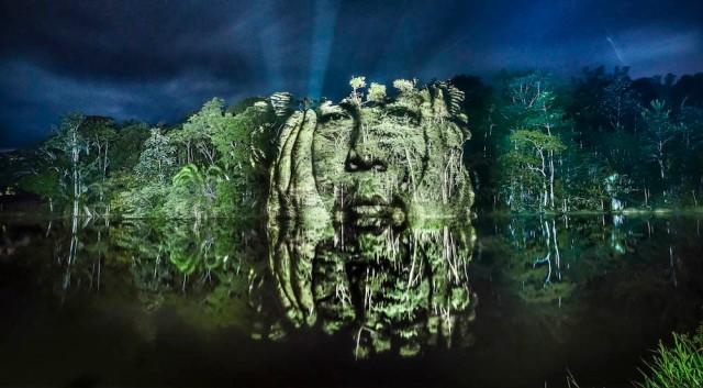 philippe-echaroux-rainforest-2